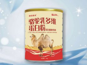 驼乳多维蛋白粉